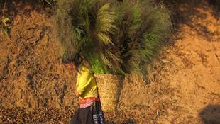 Cuộc sống của con người Điện Biên hiện lên với vẻ đẹp bình dị