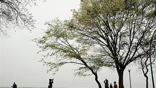 Hà Nội đẹp lãng mạn mùa hoa sưa