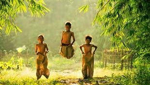 Thời thơ ấu nơi làng quê bình yên