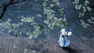 Những góc nhỏ tuyệt đẹp của Hà Nội